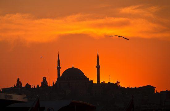 Le Meilleur De La Turquie