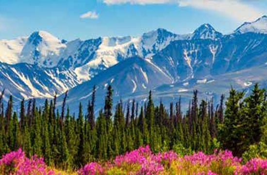 Yukon - Northwest Territories Adventures
