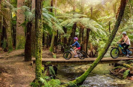 Rotorua – Culture and Nature